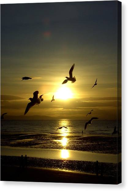 Birds Gathering At Sunset Canvas Print