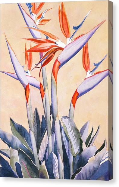 Tropical Plant Canvas Print - Birds Of Paradise by Mary Helmreich