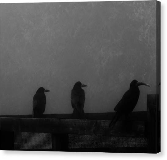 Birds On A Fence Canvas Print by Michelle O'Neill