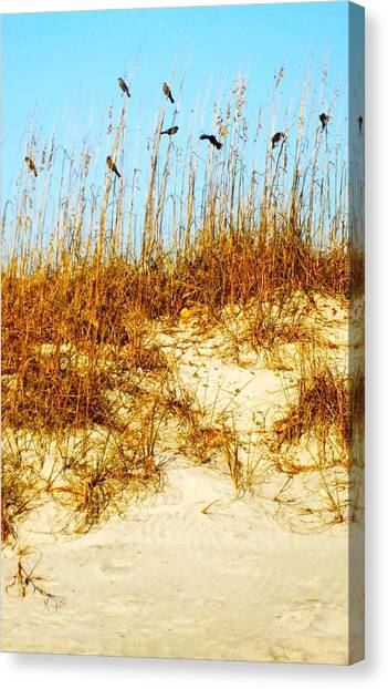 South Carolina Canvas Print - Birds On Sea Oats II by Meagan Johnson