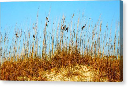 South Carolina Canvas Print - Birds On Sea Oats by Meagan Johnson