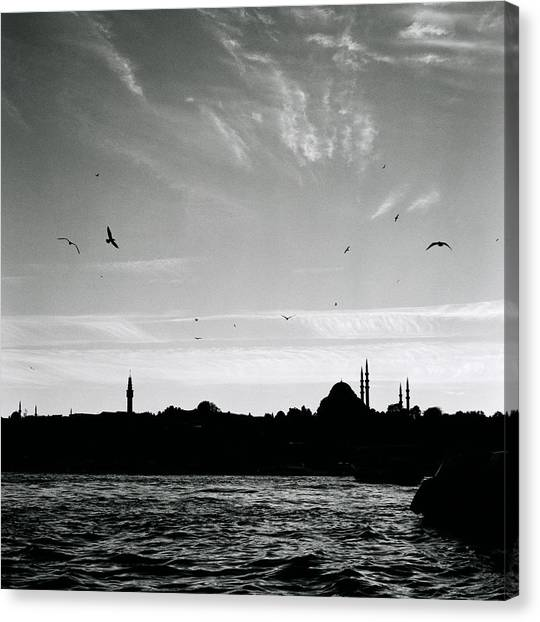Birds Over The Golden Horn Canvas Print