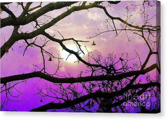 Birds Roosting For Night Canvas Print