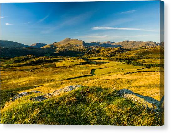 Birker Fell Lake District Canvas Print by David Ross