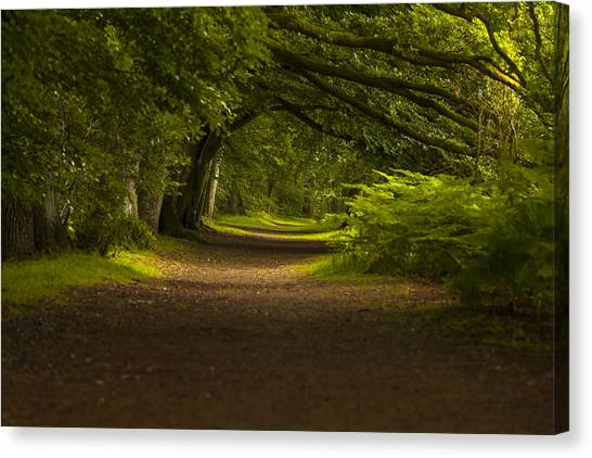 Birnam Woods Landscape Wall Art Canvas Print
