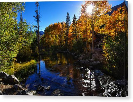 Bishops Canvas Print - Bishop Creek Fall Color Sunset by Scott McGuire