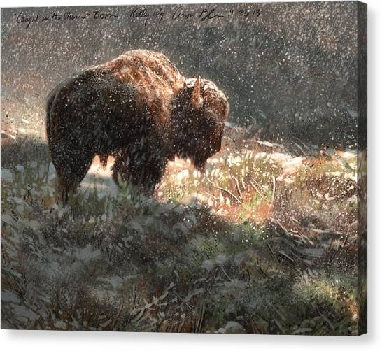 Bison Canvas Print - Bison In The Snow by Aaron Blaise