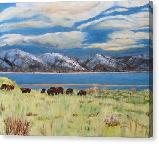 Bison On Antelope Island Canvas Print