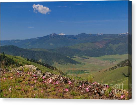Bitterroot Montana View Canvas Print by Charles Kozierok