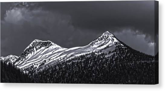 Black And White Deer Mountain  005 Canvas Print