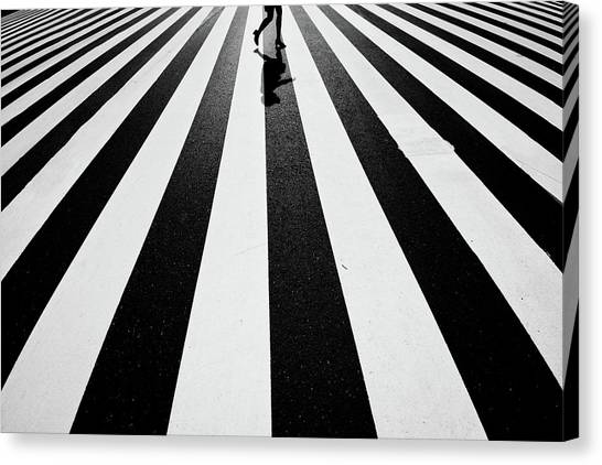Zebras Canvas Print - Black And White by Kouji Tomihisa