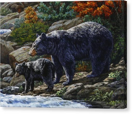 Black Bears Canvas Print - Black Bear Falls - Detail by Crista Forest
