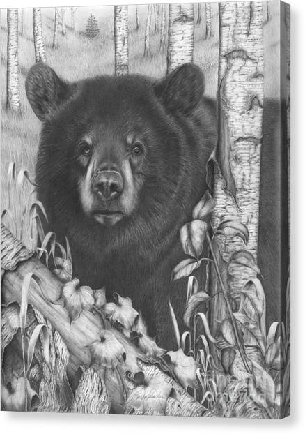 Black Bear On Newsome Creek Canvas Print