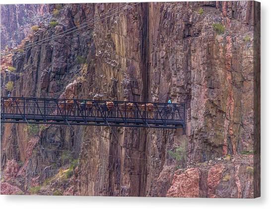 Black Bridge In The Grand Canyon Canvas Print