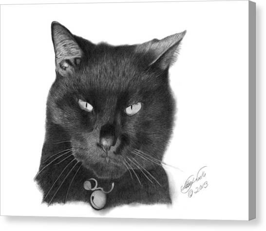 Black Cat - 008 Canvas Print