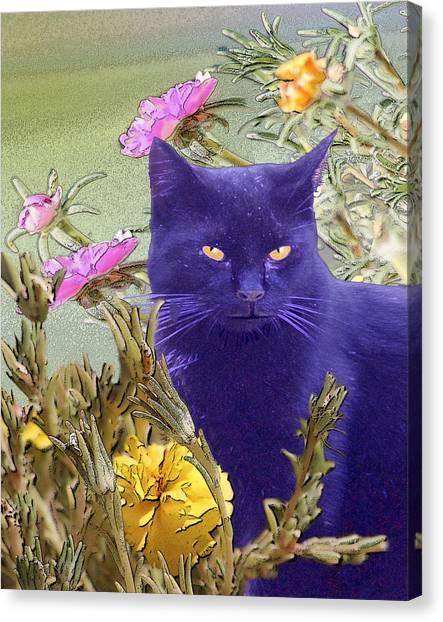 Black Cat Lurking In The Portulaca Canvas Print