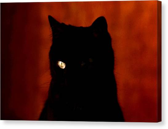 Black Cat - Yellow Eye Canvas Print by Robert  Rodvik