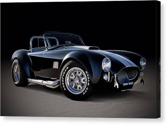 Cobras Canvas Print - Black Cobra by Douglas Pittman