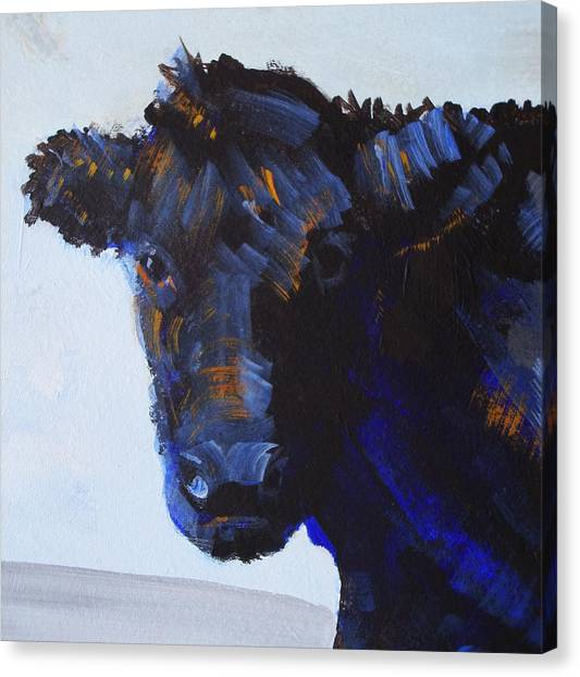 Black Cow Head Canvas Print