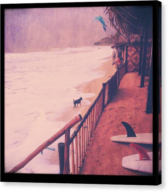 Surfing Canvas Print - Black Dog by Candace Fowler