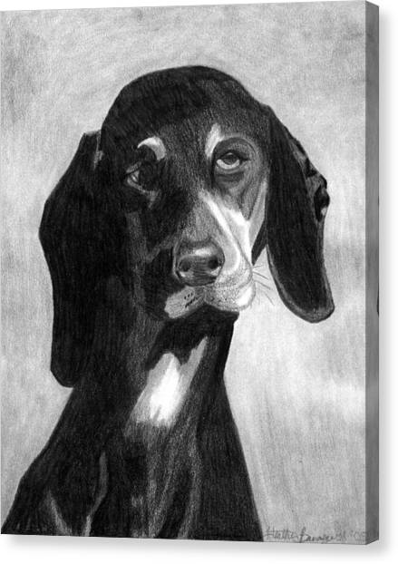 Black Forest Hound Dog Portrait  Canvas Print by Olde Time  Mercantile