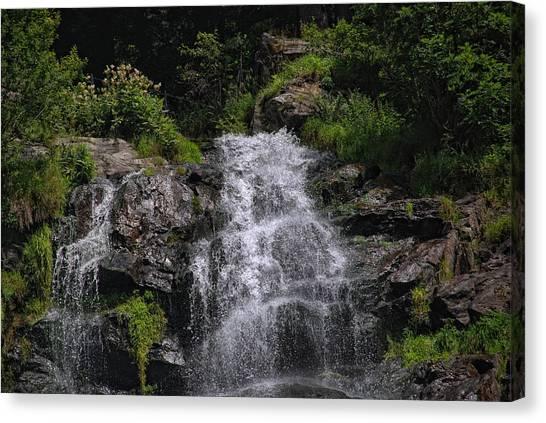Black Forest Canvas Print - Black Forest Waterfall by Joachim G Pinkawa