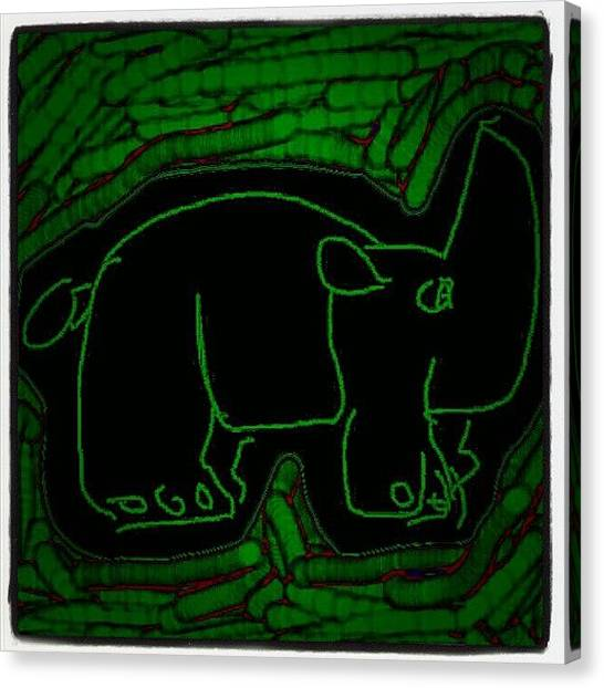 Rhinos Canvas Print - #black #green #rhino #rhinoceros #paint by Nuno Marques