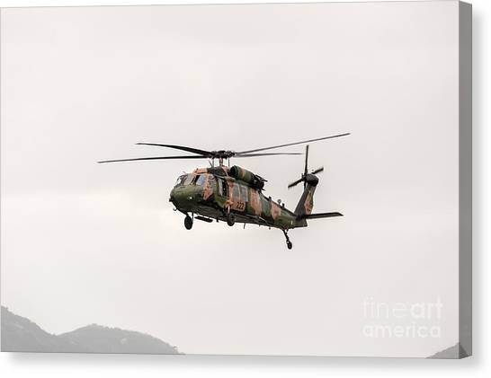 Black Hawk  Canvas Print