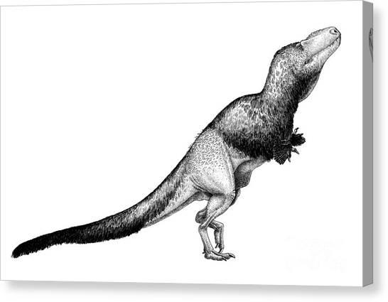 Pen And Ink Drawing Canvas Print - Black Ink Drawing Of Daspletosaurus by Vladimir Nikolov