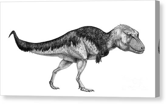 Pen And Ink Drawing Canvas Print - Black Ink Drawing Of Lythronax Argestes by Vladimir Nikolov