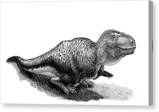 Pen And Ink Drawing Canvas Print - Black Ink Drawing Of Tarbosaurus Bataar by Vladimir Nikolov