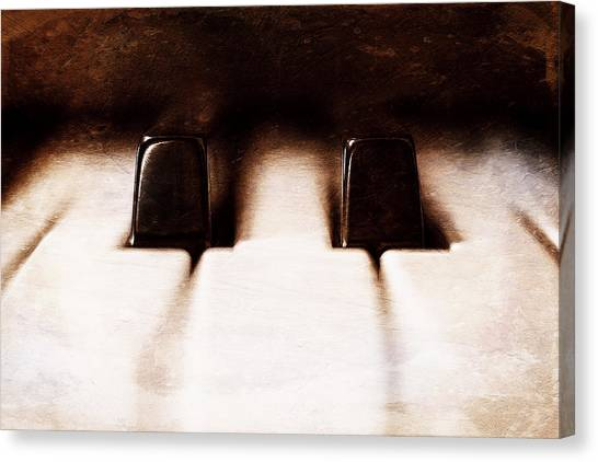 Ivory Canvas Print - Black Keys D Flat And E Flat  by Scott Norris