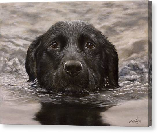 Canvas Print - Black Labrador Portrait II by John Silver