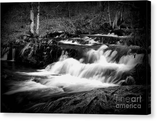 Black N White Cascades Canvas Print
