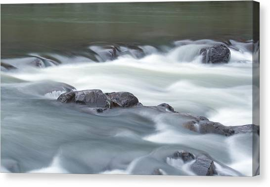Black River Canvas Print