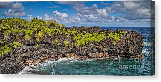 Black Sand Canvas Print - Black Sand Beach Maui Hawaii by Edward Fielding