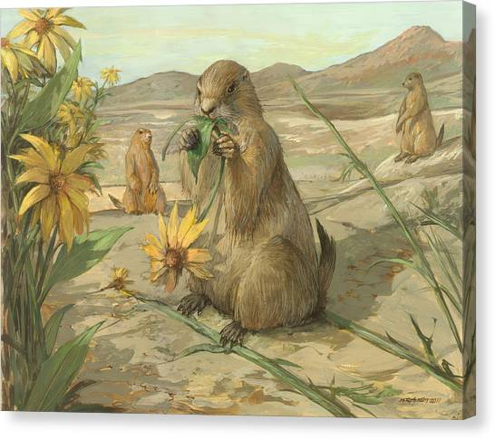 Black-tailed Prairie Dogs Canvas Print by ACE Coinage painting by Michael Rothman