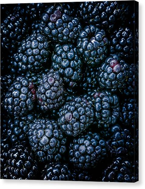 Wild Berries Canvas Print - Blackberries by Karen Wiles