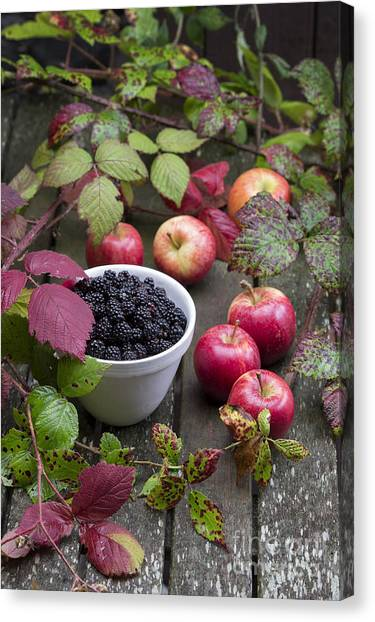 Wild Berries Canvas Print - Blackberry And Apple by Tim Gainey