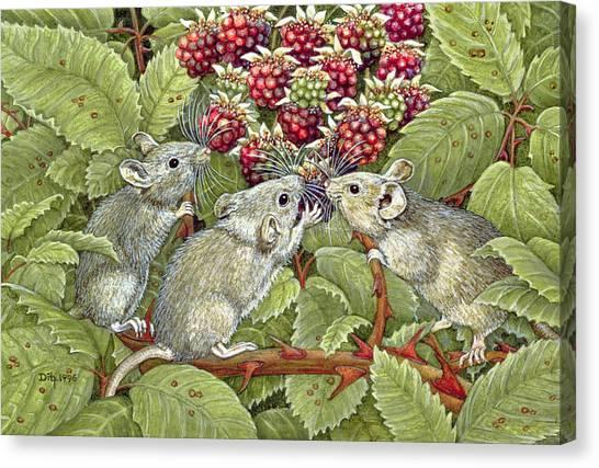 Blackberries Canvas Print - Blackberrying by Ditz