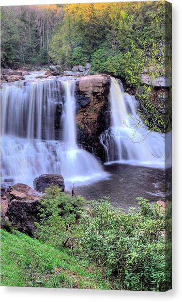 Blackwater Falls Canvas Print