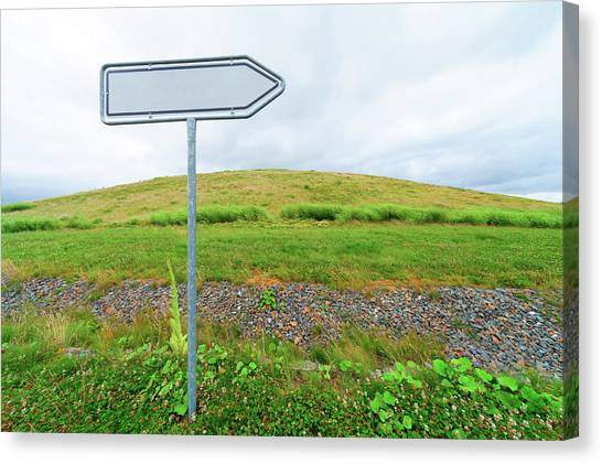 One Direction Canvas Print - Blank Directional Sign In A Field by Wladimir Bulgar