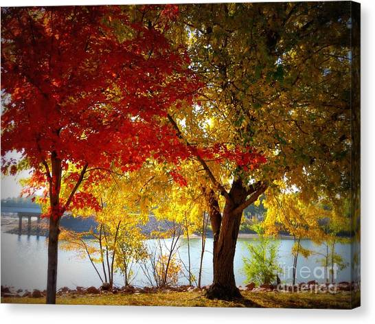Blaze Of Color Canvas Print by Mary Willrodt