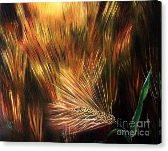 Blessed Seeds Collection - Fields Of Gold Canvas Print