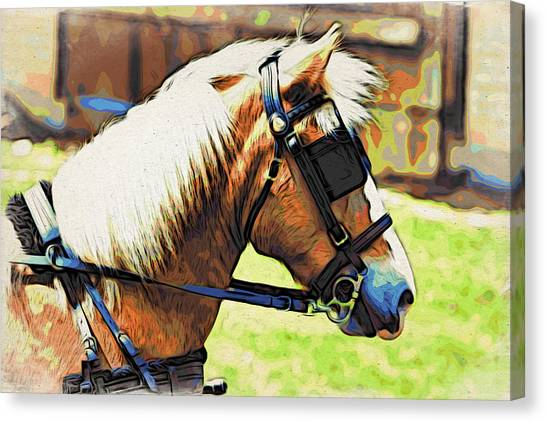 Blinders Canvas Print