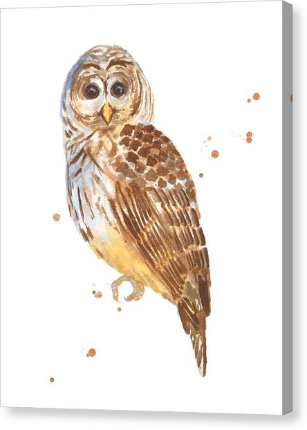 Owls Canvas Print - Blink by Alison Fennell