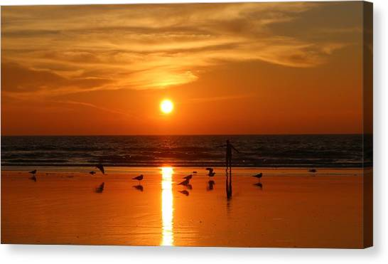 Bliss At Sunset   Canvas Print