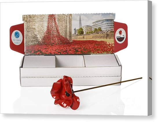 The Legion Canvas Print - Blood Swept Lands And Seas Of Red by Amanda Elwell