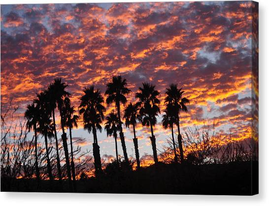 Bloody Sunset Over The Desert Canvas Print