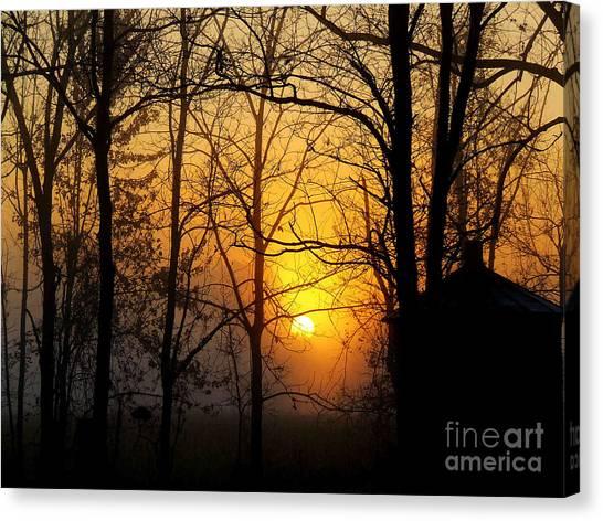 Bloom II Morning Mist Sunrise Canvas Print